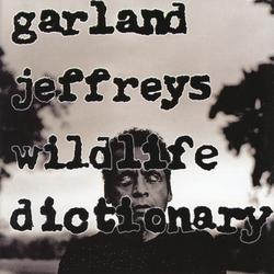 Cover image for Wildlife Dictionary