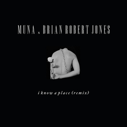 Cover image for I Know A Place (brian robert jones remix) / アイ・ノウ・ア・プレイス (brian robert jones remix) / アイノウアプレイスブライアンロバートジョーンズリミックス