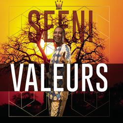 Cover image for Seeni Valeurs