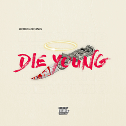 Cover image for Die Young
