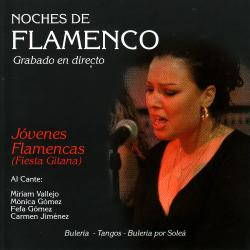 Cover image for Noches de Flamenco - Jovenes Flamenca (Fiesta Gitana)
