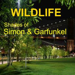 Cover image for Shades of Simon and Garfunkel