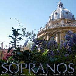 Cover image for The Sopranos
