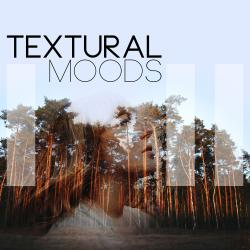 Cover image for Textural Moods