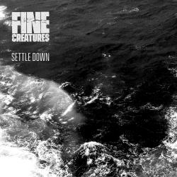 Cover image for Settle Down