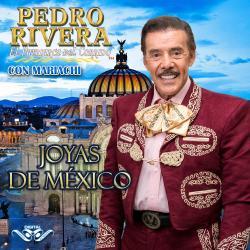 Cover image for Joyas de México