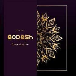 Cover image for Gospel Consolation