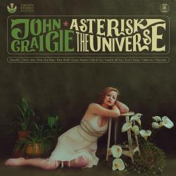 Cover image for Asterisk the Universe