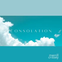 Cover image for Consolation