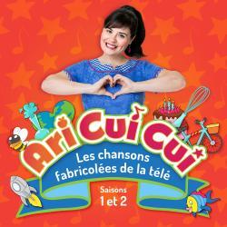 Cover image for Les chansons fabricolées de la télé (Saisons 1 et 2)