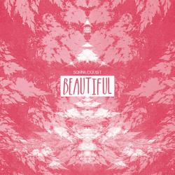 Cover image for Beautiful