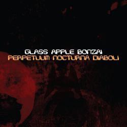 Cover image for Perpetuum Nocturna Diaboli