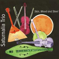Cover image for Skin, Wood and Steel