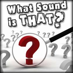 Cover image for What Sound Is That?