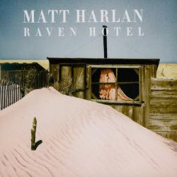 Cover image for Raven Hotel