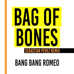 Cover image for Bag of Bones (Sebastian Perez Remix)