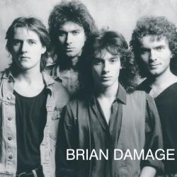 Cover image for Brain Damage