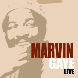 Cover image for Marvin Gaye Live