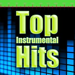 Cover image for Top Instrumental Hits 2011