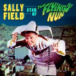 """Cover image for Star Of """"The Flying Nun"""""""
