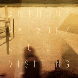 Cover image for Just Visiting