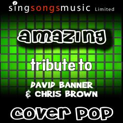 Cover image for Amazing (Tribute to David Banner & Chris Brown)