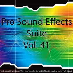 Cover image for Pro Sound Effects Suite 41 - Feet and Footsteps 2