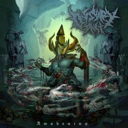 Cover image for Awakening