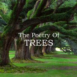 Cover image for The Poetry of Trees