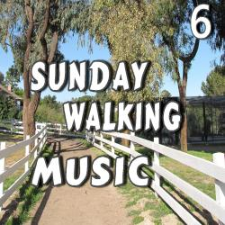 Cover image for Sunday Walking Music, Vol. 6 (Special Edition)