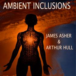 Cover image for Ambient Inclusions